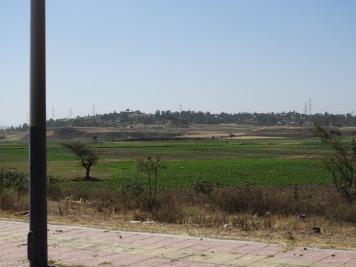 Beautiful fertile agricultural land.